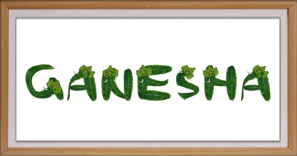 Write Names Using Ganesha Artwork Alphabets
