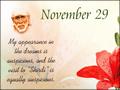 November 29, 2012